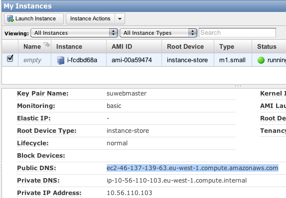 Screenshot of the public address to the Amazon EC2 instance